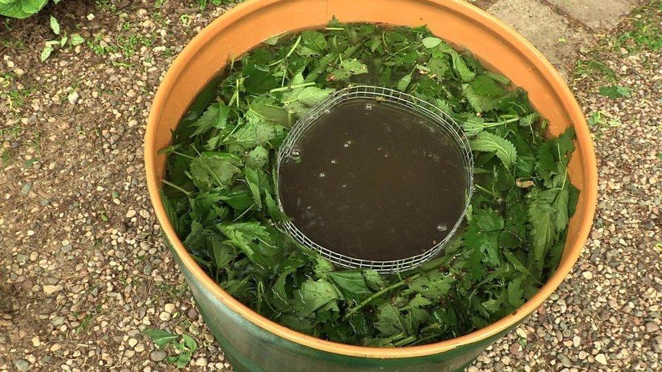 Как сделать травяной перегной