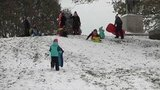 Сильнейший снегопад обрушился наЧикаго иего окрестности