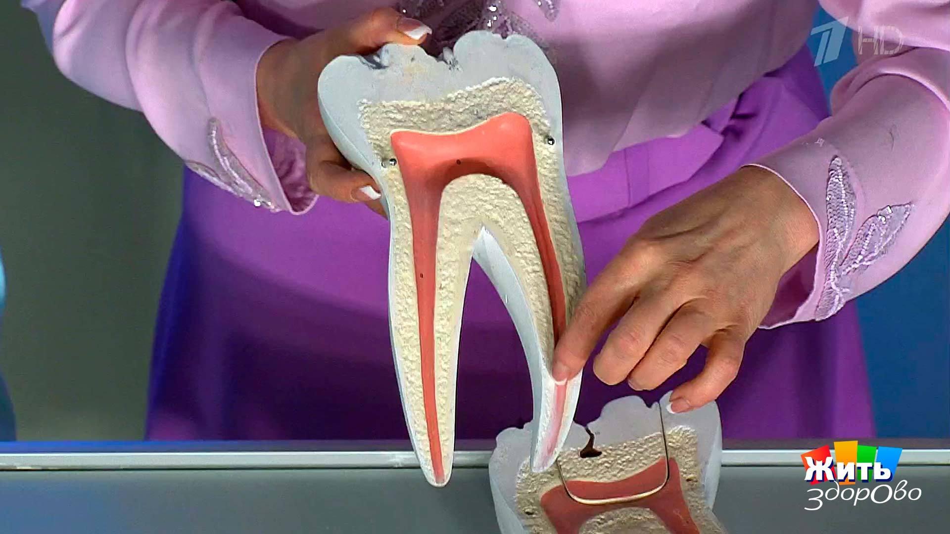 Выбитый зуб вставили обратно