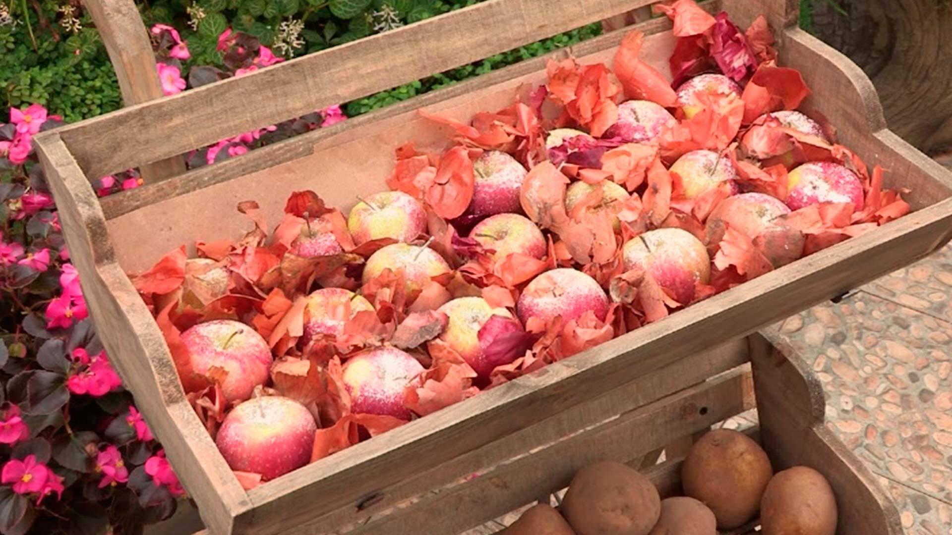 Как хранить яблоки зимой в домашних условиях 55