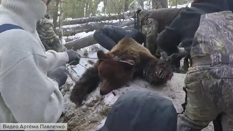 Домашнее видео жена в охоте — 5