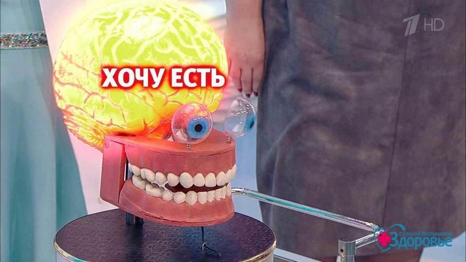 Передача Жить Здорово - zdorovo-1tvru
