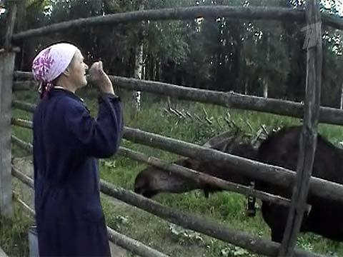 Бабу доят как корову видео фото 635-552