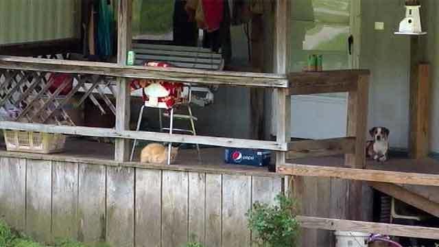 ВСША пятилетний ребенок застрелил сестру изигрушечного оружия. Новости. Первый канал